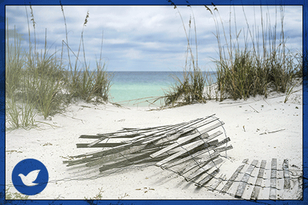 Pensacola, FL, Drug Treatment and Alcohol Rehab Information